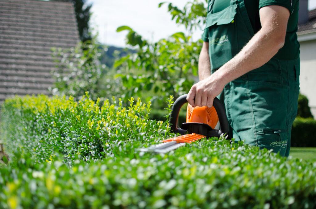 Gartenpflege Langenthal